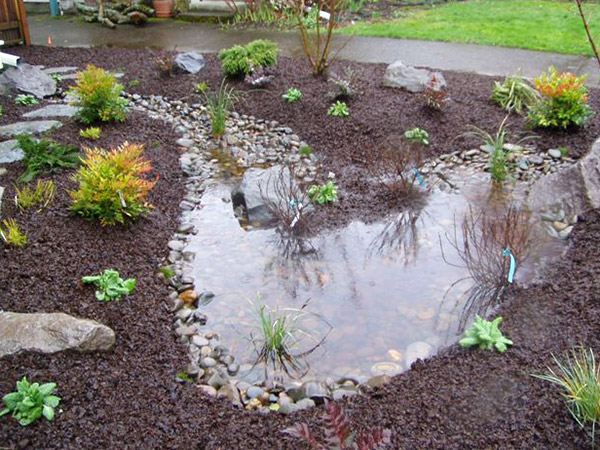Garden Design Garden Design with Rain Garden Design Examples