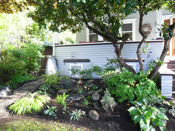 A Decorative Rain Barrel Overflows Into A Rain Garden In The Front Yard.  Installation By