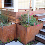 Storm water from the roof is treated beautifully through these steel flow thru planters along side a deck in the backyard. Installed by Homeowner.
