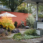Colored stucco has transformed this uninspired concrete block wall into a focal point surrounded by lush plantings. Stucco by Fine Craft Masonry, Hardscape & Garden Installation by Creative Touch Landscaping.