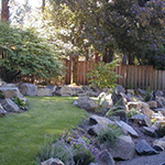 A cool river of lawn sets off the boulders in this rockery. A smooth transition of terraces makes a formerly steep slope more useable.