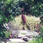 A rusted steel egret stands alone in a framed view with a variegated sedge behind him suggesting the pond hidden beyond. Installation by KM Development Professional Landscape.