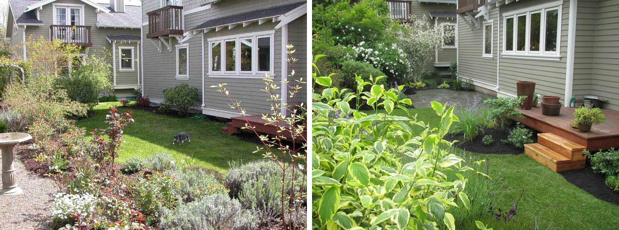 with such a small space the challenge here was to provide an intimate living space - Backyard Before And After