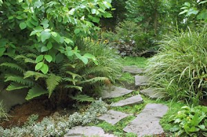 steppingstone path